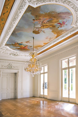 Hôtel Salomon de Rothschild 3