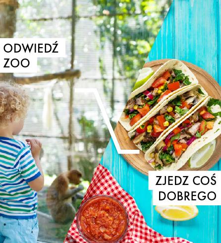 Odwiedź ZOO, zjedz coś dobrego