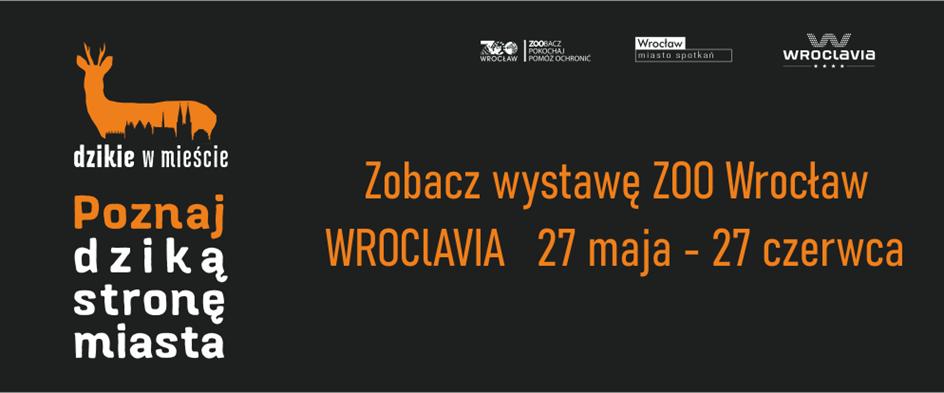 """Wystawa """"Dzikie w mieście"""" przed Wroclavią"""
