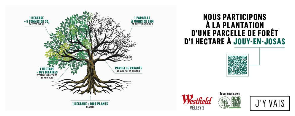 Westfield Vélizy 2 soutient l'ONF - Agir pour la Forêt